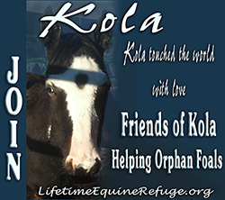Donate in honor of Kola