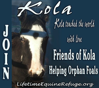 Friends of Kola